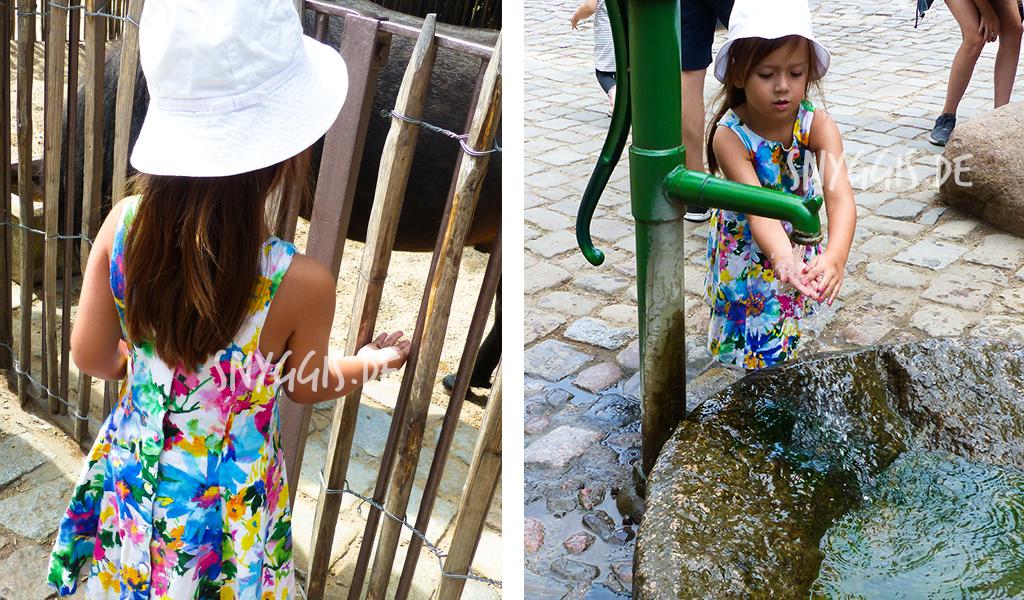Pony füttern und Hände waschen