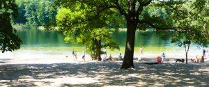 Grundewald See