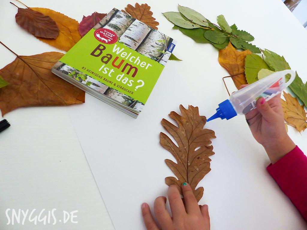 Wir bestimmen die Blätter, kleben sie auf Papier und ich beschrifte sie.