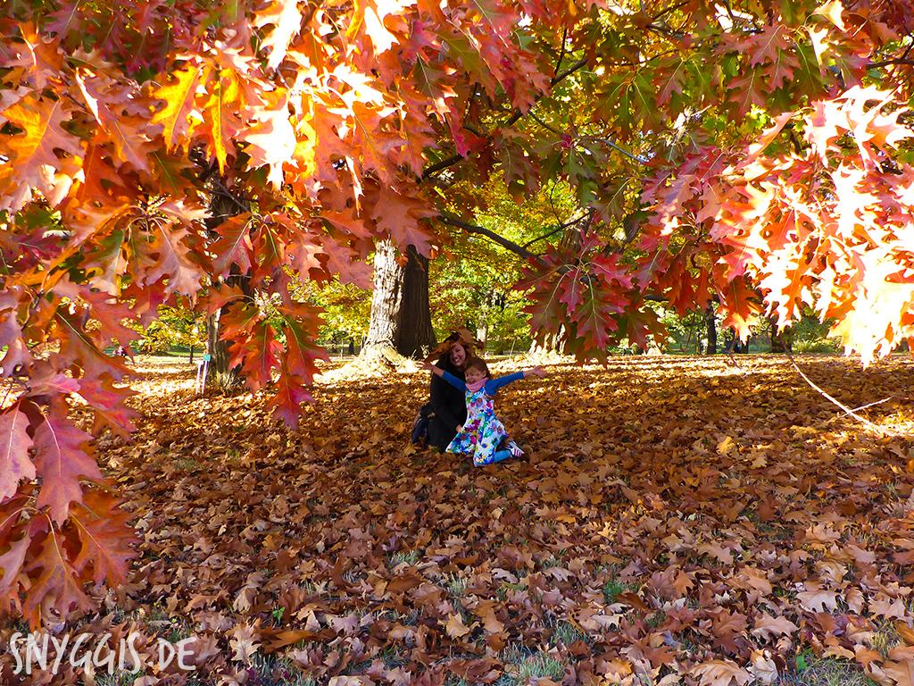 Herbst genießen