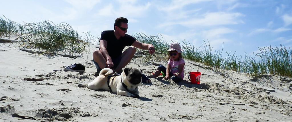 Leben mit Kind und Hund