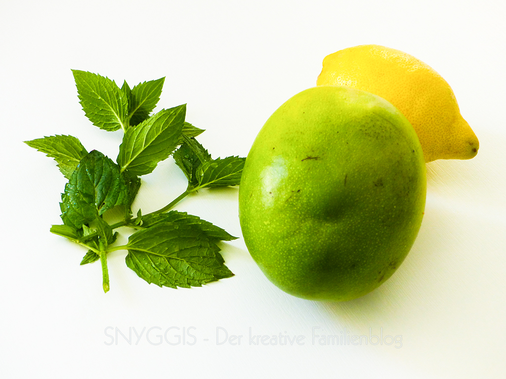 Zutaten Mango-Minz-Limonade