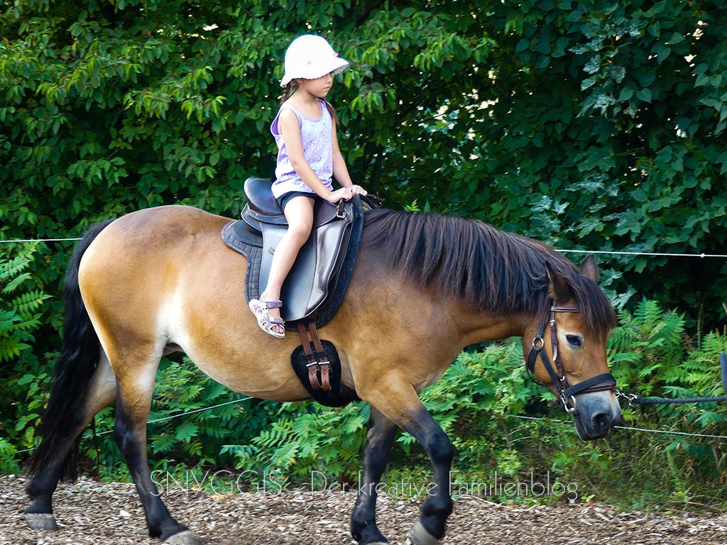 und noch mehr Pony reiten