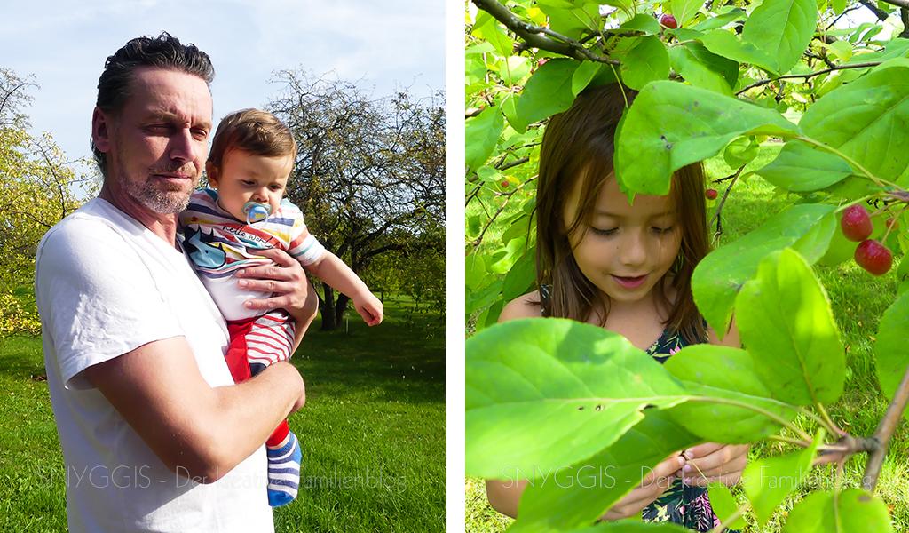 Zwischen-den-Obstbäumen