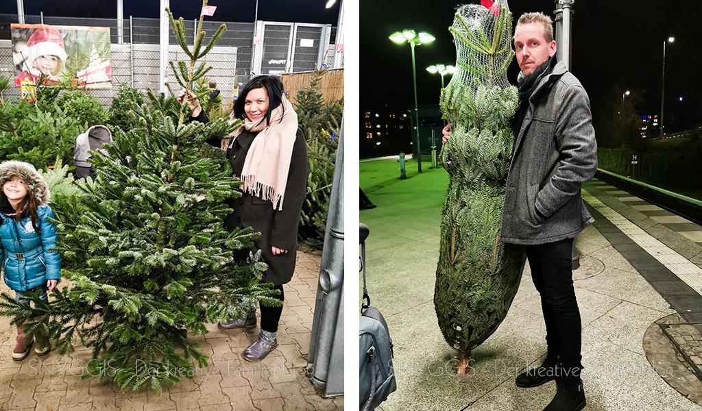 Baum-kaufen