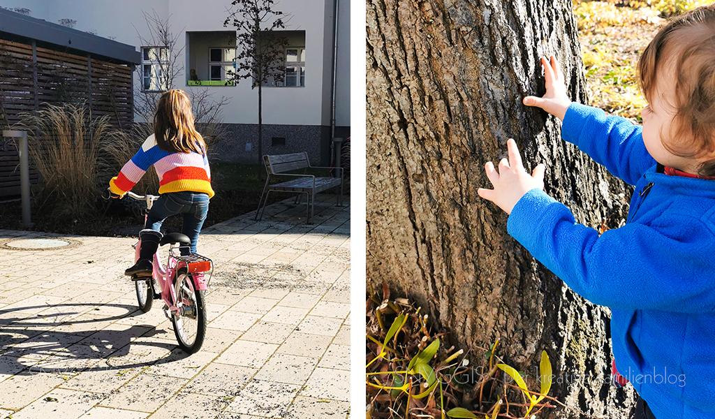 Bäume-umarmen