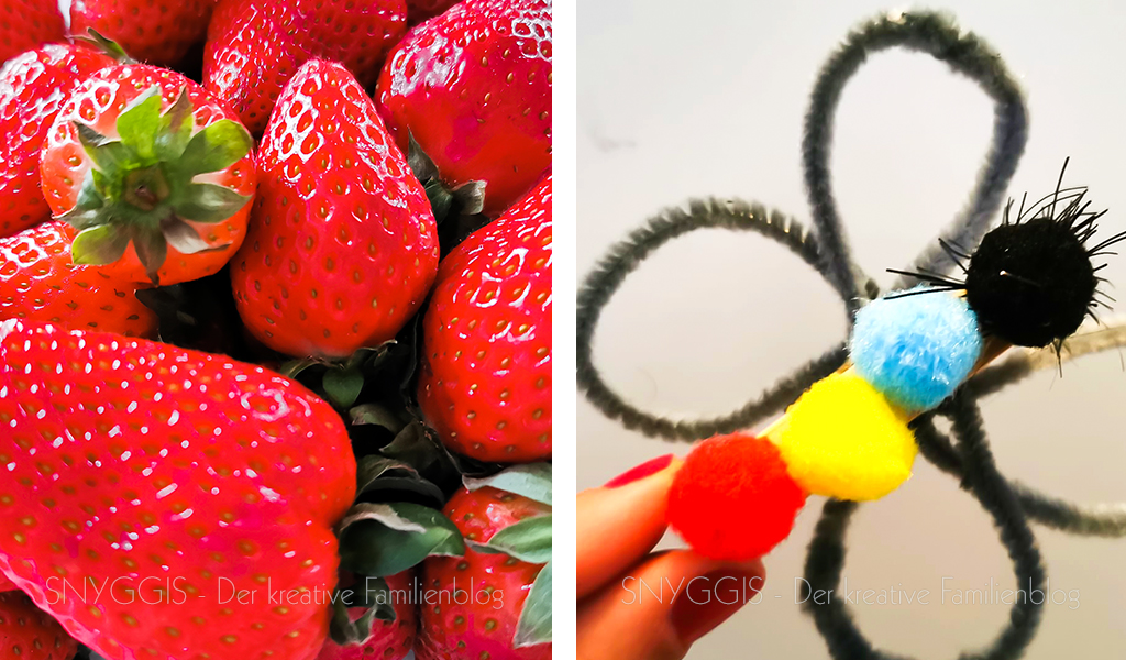 Erdbeeren-und-Schmetterling