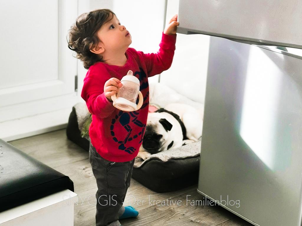 Quietschi-checkt-den-Kühlschrank