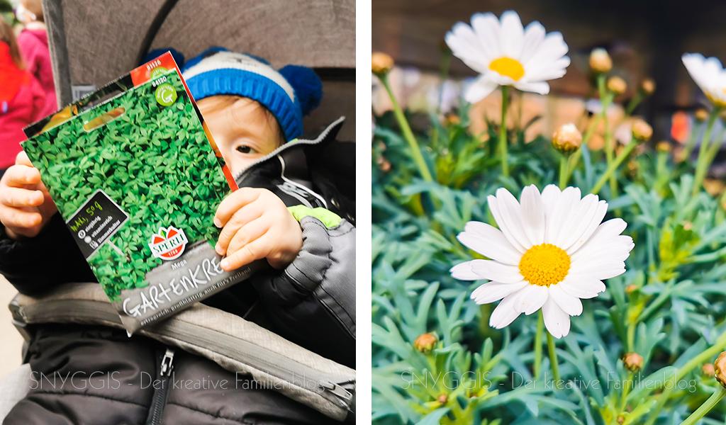 im-Blumenladen