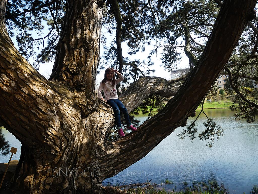 Baum-Mini-Snyggis