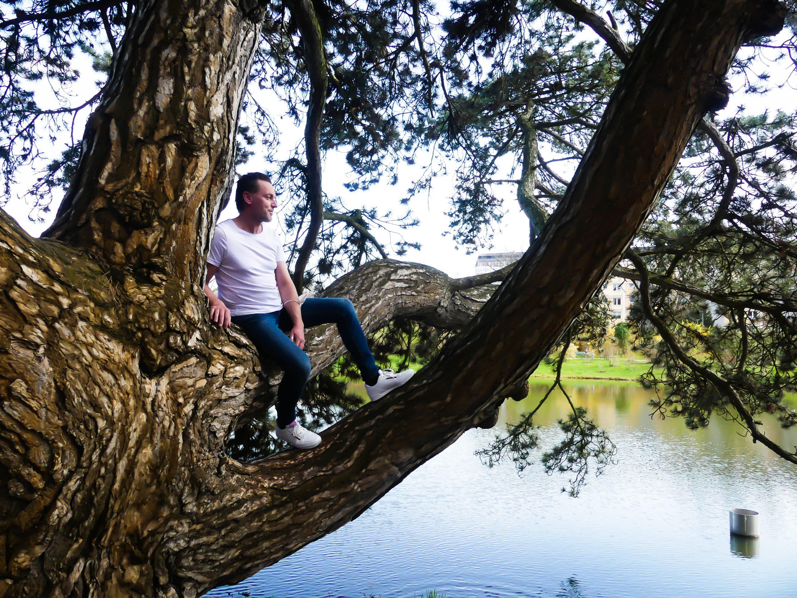 Baum ich