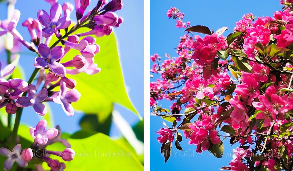 Blüten-unteregs
