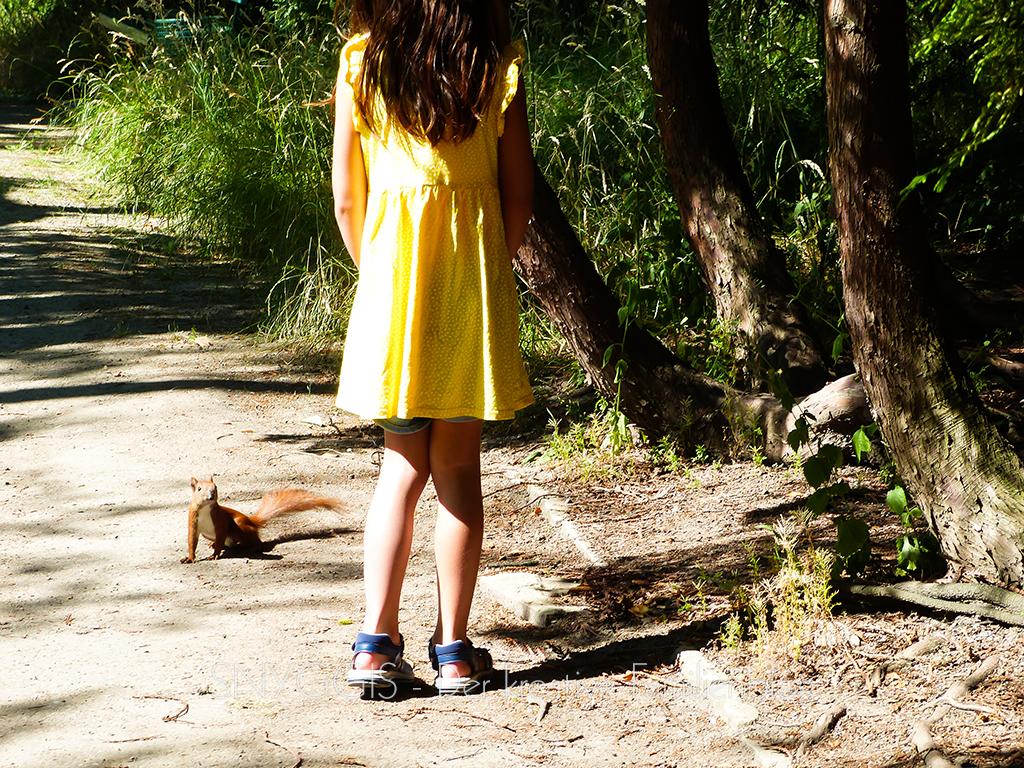 Mini-Snyggis-unterhält-sich-mit-einem-Eichhörnchen