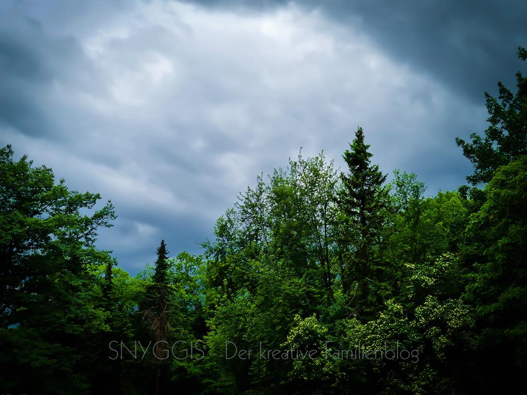 Regen-kommt